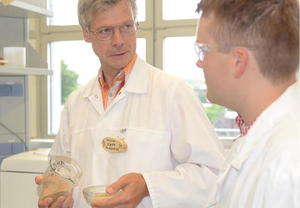 Prof. Dr. Thomas Schupp (l.) und Tobias Mohn begutachten Sägespäne, wie sie für die Produktion von Spanplatten verwendet werden. (Foto: FH Münster/Pressestelle)