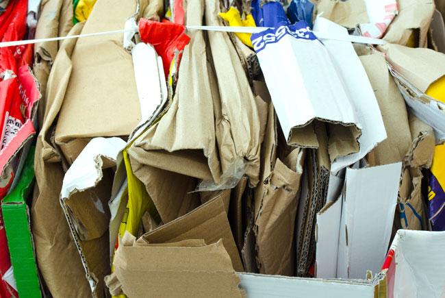 Immer mehr Verpackungsmüll in Deutschland – Bewusst einkaufen gehen!
