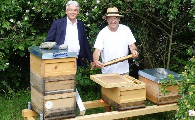 Fünf Bienenvölker fliegen künftig auf dem Betriebsgelände der Mineralquellen Wüllner in Bielefeld-Ubedissen. (Foto: Carolinen)