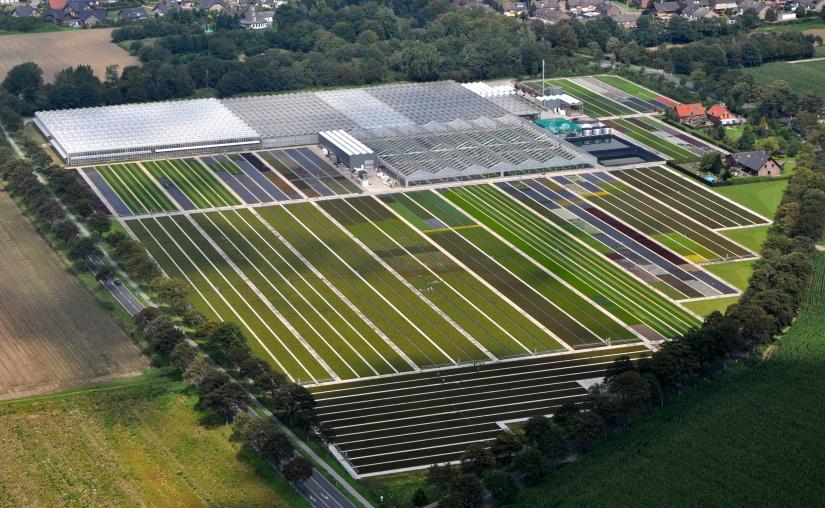Digitalisierung im Gartenbau: INQUIRE von STAGEx geht an den Start