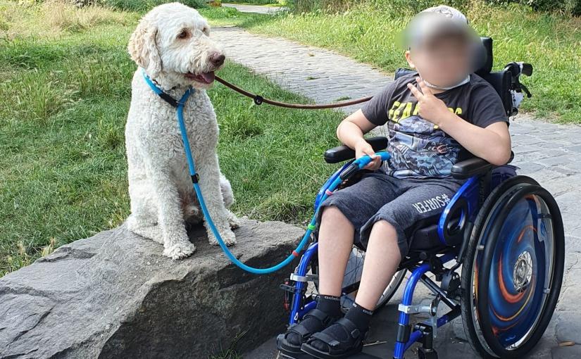 """Die Organisation """"Enniger hilft Kindern"""" bietet auch Unterstützung vor Ort. Hier wurde einem krebskranken Kind aus Münster eine Hundetherapie ermöglicht. Foto: Enniger hilft Kindern e.V."""