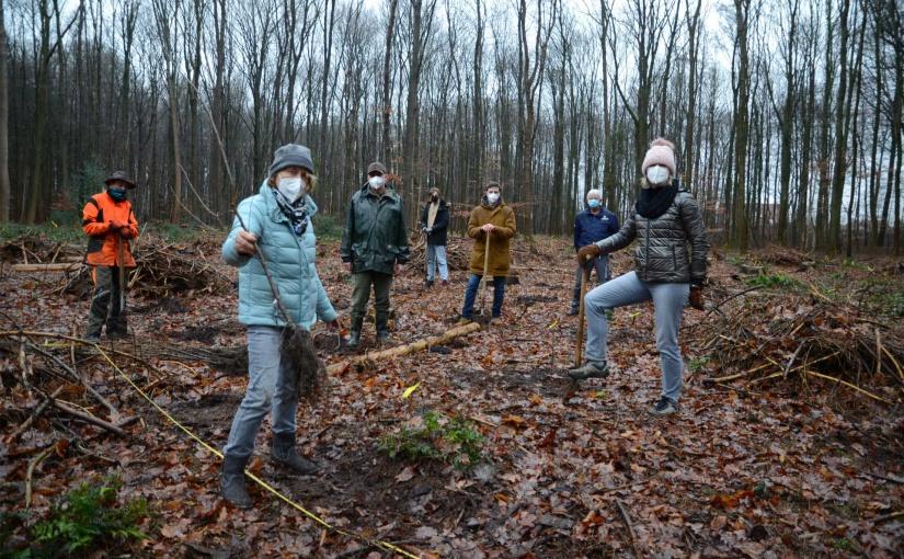 Gauselmann: Aufforstung des Waldes am Schloss Benkhausen