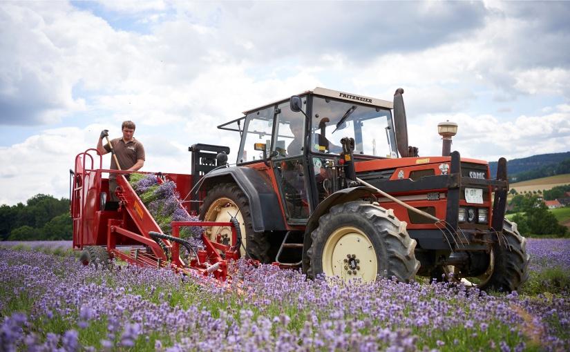 TAOASIS übernimmt regionale Verantwortung in Ostwestfalen-Lippe