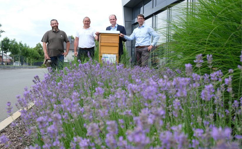 200.000 Bienen finden neues Zuhause: Bienenvölker an fünf Nagel-Group-Standorten angesiedelt